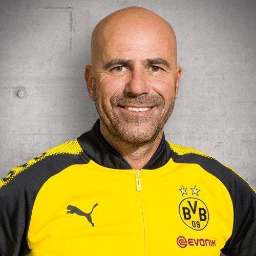 Peter Bosz ist neuer Cheftrainer beim BVB