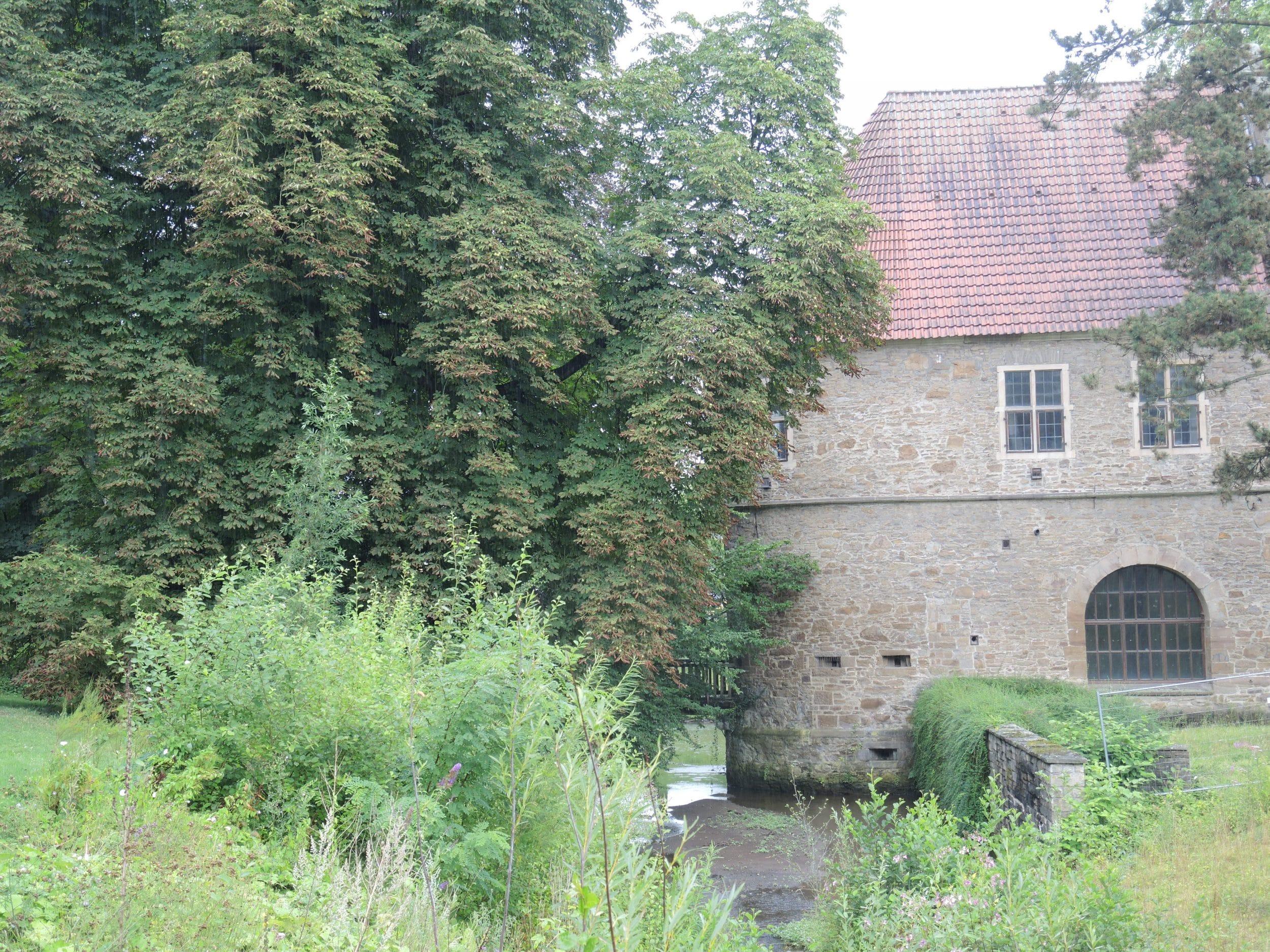Die Kunstwerke werden später in der städtischen Galerie Torhaus Rombergpark gezeigt. (Archivfoto: IN-StadtMagazine)