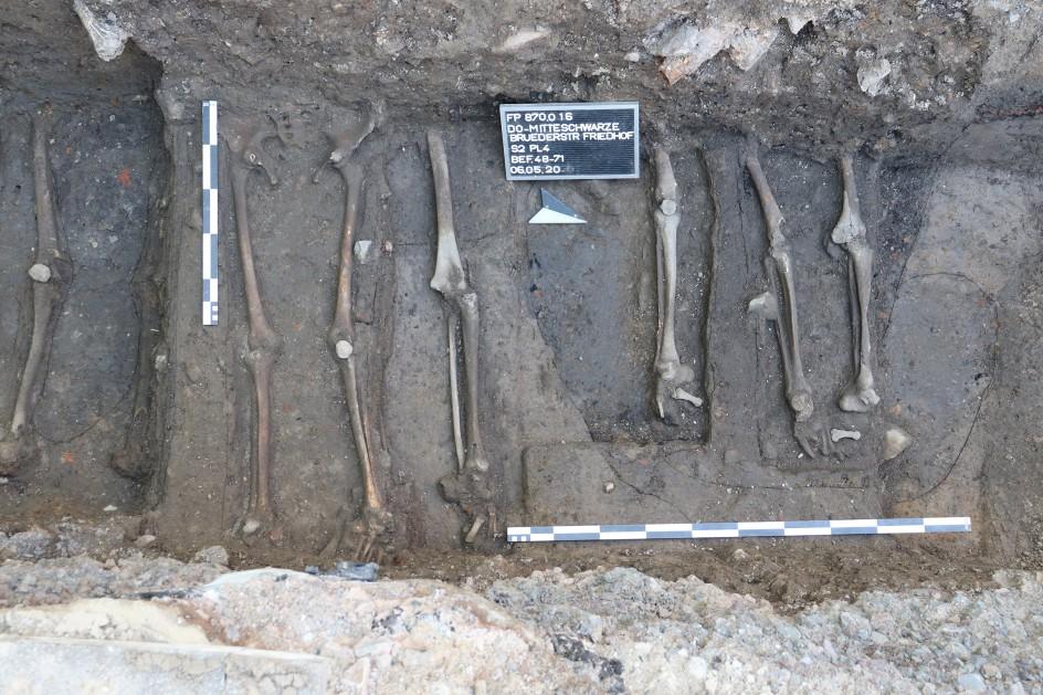 Knochen aus der Schwarzen-Brüder-Straße. (Foto: LQ-Archäologie 2020)