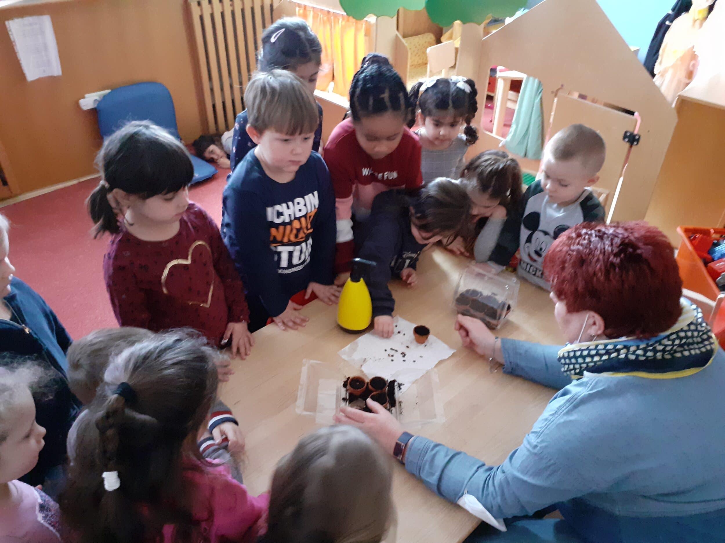 Die Kinder des Astrid-Lindgren-Kindergartens ziehen die Pflanzen für das Hochbeet vor. (Foto: Kindergarten)