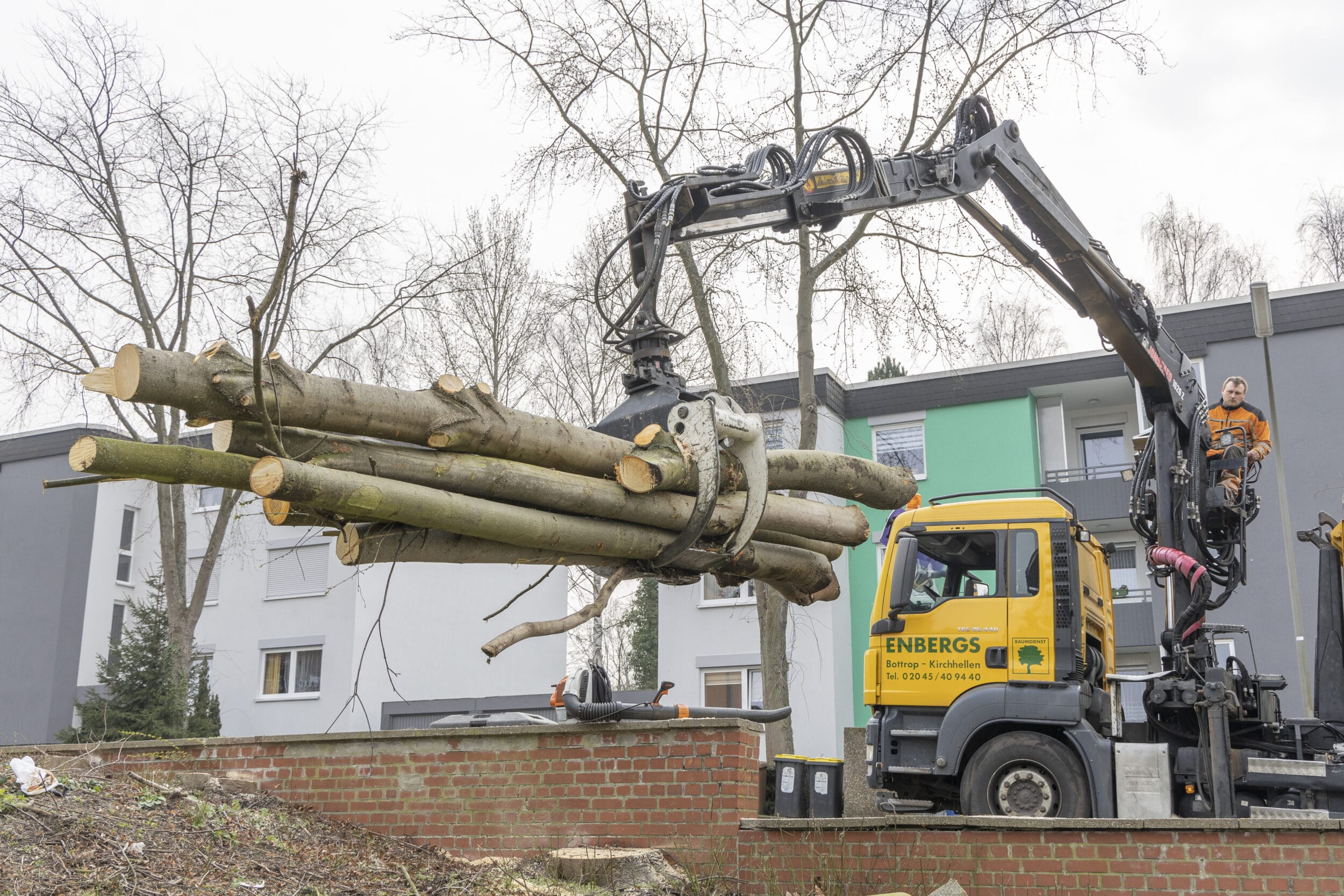 Schweres Gerät ist notwendig, um zahlreiche Bäume an der Artur-Beringer-Straße zu fällen. Die DOGEWO allerdings hat zugesichert, im Laufe der nächsten anderthalb Jahre für großzügige Ersatzpflanzungen zu sorgen. (Fotos: Wir in Dortmund)