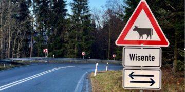 Die Polizei warnt vor Wildwechsel – das gilt auch für Motorradfahrerinnen und -fahrer. (Foto: Polizei Dortmund)