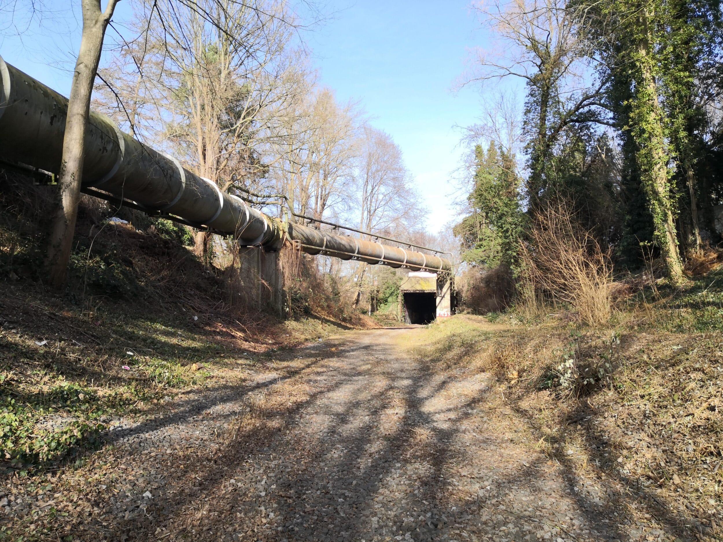 Teilstück des Gartenstadtradweges im März 2021 nach Abschluss der Rodungsarbeiten © RVR/Mohn