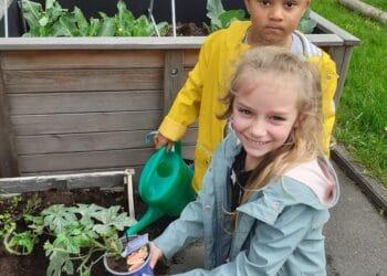 Kleine Gärtnerinnen bei der Arbeit ... (Fotos: Kindergarten)