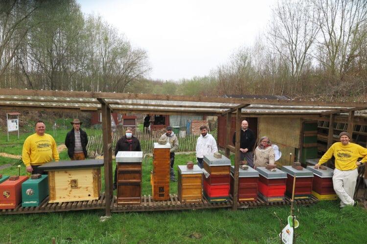 Auch während Corona brauchen Bienenstöcke Pflege. (Fotos: Wir in Dortmund)