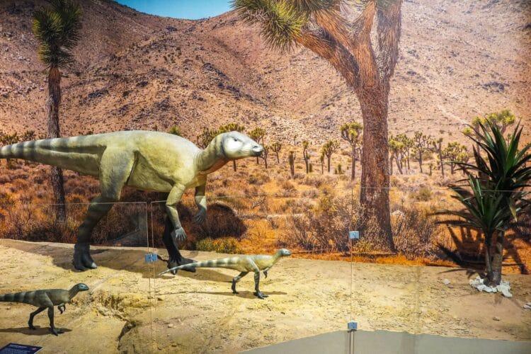 Die Ausstellung im Naturkundemuseum startet ab 01. Juni 2021. (Fotos: WIR IN DORTMUND)