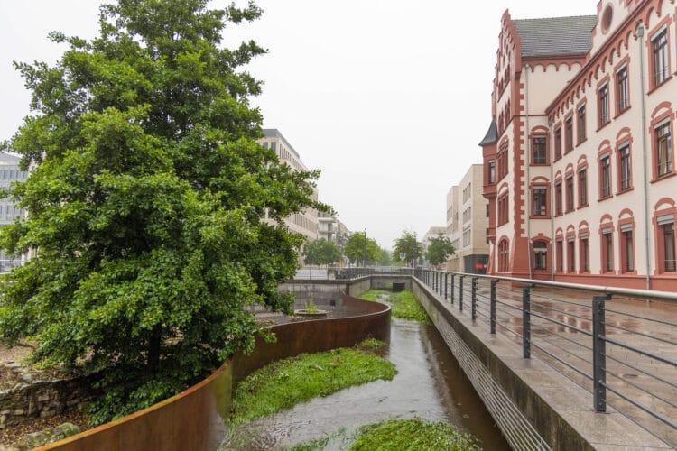 Der Hörder Bach (Foto: Wir in Dortmund)