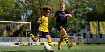 © Borussia Dortmund GmbH & Co. KGaA