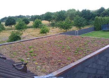 Das begrünte Dach eines Privathauses in Deusen. (Foto: privat)