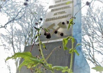 Eine der Stationen ist das Ehrenmal für die Opfer des Grubenunglücks auf Zeche Zollern in Kirchlinde. (Foto: Wolfgang Kienast)