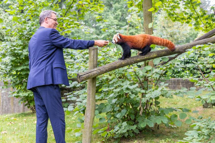 Oberbürgermeister Thomas Westphal näherte sich seinem neuen Patenkind mit einem Snack. (Fotos: Wir in Dortmund)