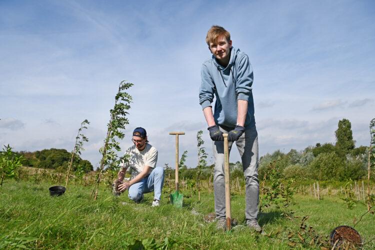 Die beiden Architektur-Erstsemester Roberto und Lorenz pflanzen zu Beginn ihres Studiums einen Baum im ErstTree-Wald der FH Dortmund. Mehr als 400 Bäume stehen inzwischen in der Nähe des FH-Campus an der Emil-Figge-Straße. (Fotos: FH Dortmund/Benedikt Reichel)