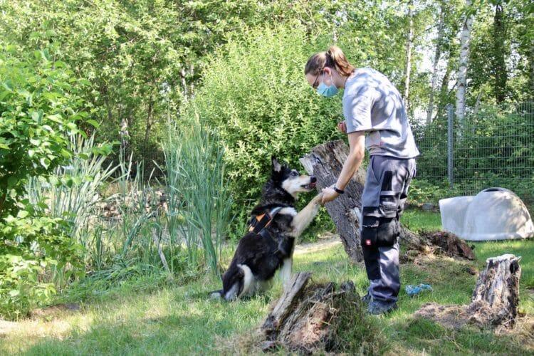 Fotos: Tierschutzzentrum