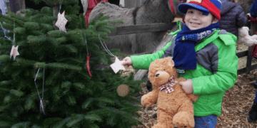 Die Stiftung help and hope hilft, Weihnachtswünsche benachteiligter Kinder zu erfüllen. –        Dazu schreiben die Kinder ihre Wünsche auf einen Stern, der symbolisch an den Weihnachtsbaum gehangen wird. (Foto: help and hope Stiftung)