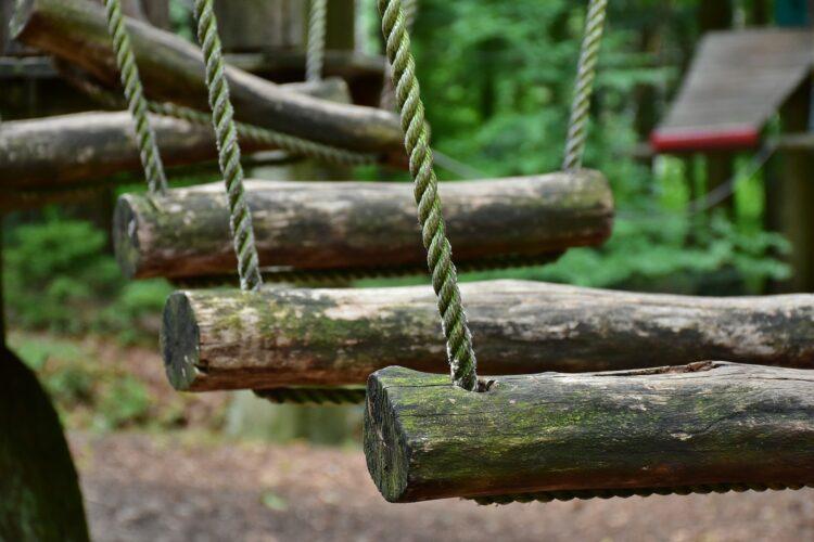 Auch der Ausflug in einen Kletterpark steht auf dem Programm. (Symbolfoto: pixabay)